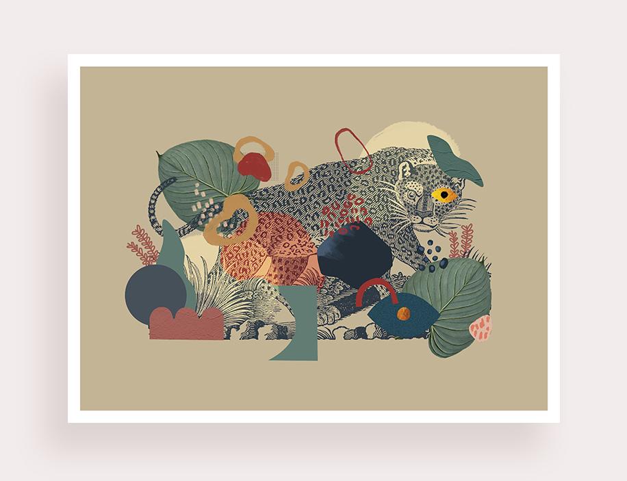 Panthera - Flouk Floriane Dupont studio design créations graphique lille roubaix