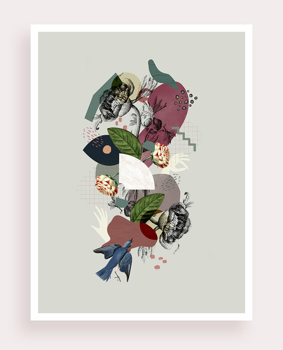Ranunculus - Flouk Flouk Floriane Dupont studio design créations graphique lille roubaix